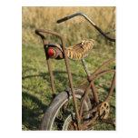 Bicycle Cycle Bicycling Cycling Banana Cruiser Post Cards