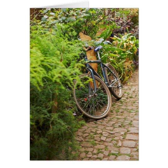 Bicycle Cycle Bicycling Cycling Miami Florida Card