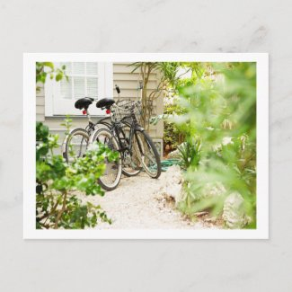 Bicycle Cycle Bicycling Cycling Miami Florida postcard