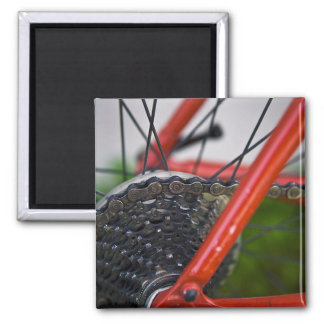 Bicycle Cycle Bicycling Cycling Wheel Sproket Magnets