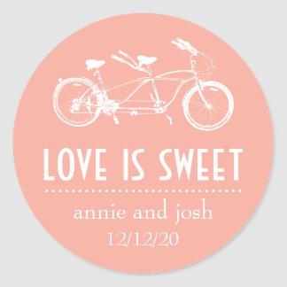 Bicycle For Two Love Is Sweet Labels (Peach)