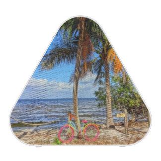Bicycle on the beach - Pine Island Florida Bluetooth Speaker