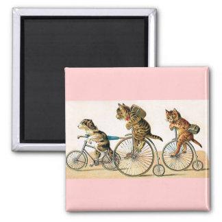 Bicycle Ride Fridge Magnet