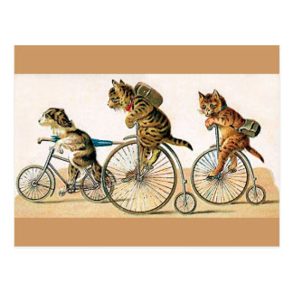 Bicycle Ride Postcard