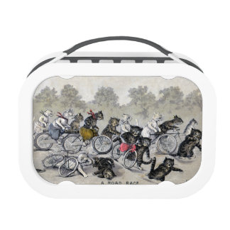 Bicycle Riding Cats Lunch Box