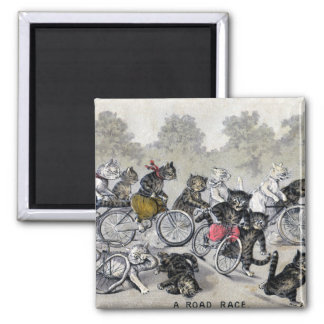 Bicycle Riding Cats Magnets