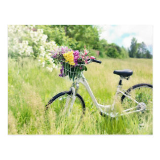 Bicycle with a flowers postcard