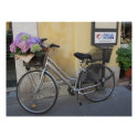 Bicycle with Basket of Hydrangeas Poster