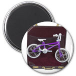 BicycleInBriefcase121611 Fridge Magnets