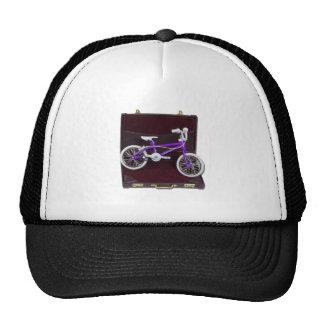 BicycleInBriefcase121611 Gorro De Camionero