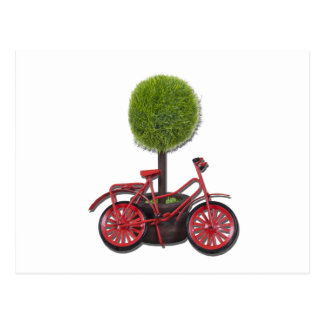 BicycleLeaningPottedTree121611 Postal