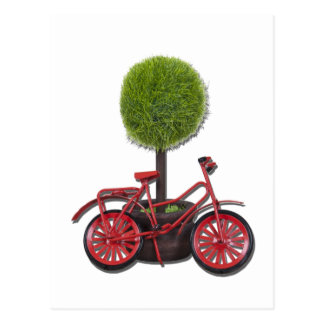 BicycleLeaningPottedTree121611 Postcard
