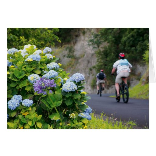 Bicycles and hydrangeas card