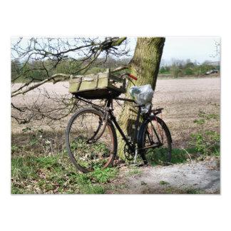 BICYCLES PHOTOGRAPH