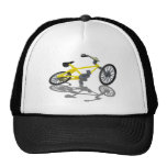BicycleViewFromBelow112010 Hats