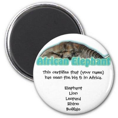 Big 5 Africa wildlife safari magnets $ 3.85