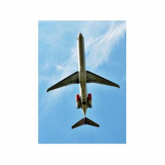 Big Airplane Take Off Photo Cutouts
