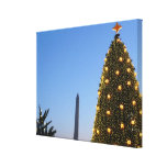 Big and Little Christmas Trees II Holiday in DC Canvas Print