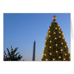 Big and Little Christmas Trees II Holiday in DC Card