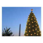 Big and Little Christmas Trees II Holiday in DC Photo Print