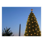 Big and Little Christmas Trees II Holiday in DC Poster