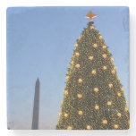 Big and Little Christmas Trees II Holiday in DC Stone Coaster