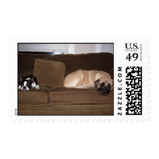Big and little postage