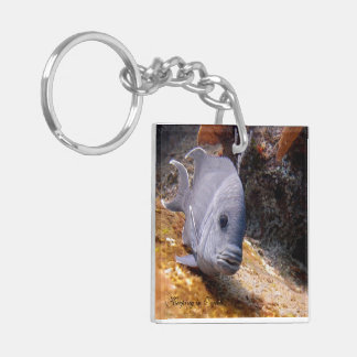 Big Aqua Fish Square (double-sided) Key Chain