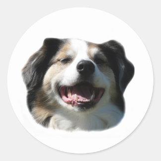 Big Aussie Smiles! Stickers