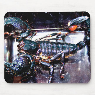 Big, Bad Scorpion Mouse Pad