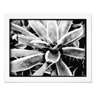 Big Bang Photo Print