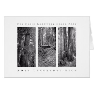 Big Basin Redwoods State Park Card