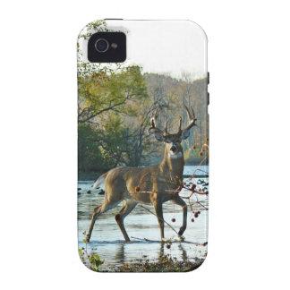 big beautiful buck vibe iPhone 4 cases