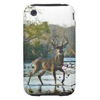 Big Beautiful Buck Tough iPhone 3 Cover