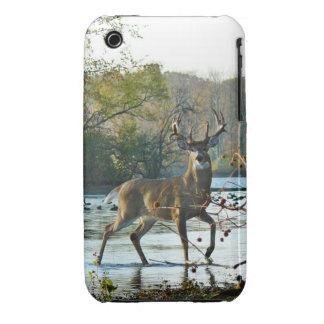 big beautiful buck iPhone 3 case