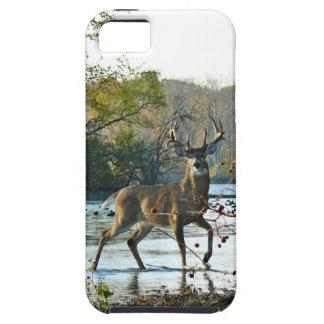 big beautiful buck iPhone 5 covers