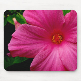Big, Beautiful Pink Flower Mouse Pad