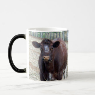 Big_Beefy_Brown_Cow,_Magic_Morph_Ringer_Mug. Magic Mug