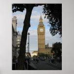 Big Ben a través de un árbol Posters
