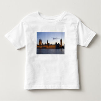 Big Ben and the Houses of Parliament in the city Tees