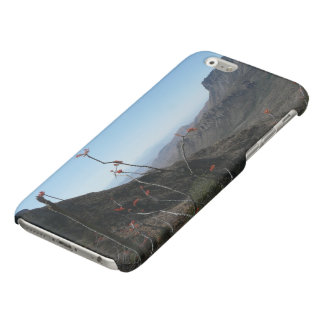 Big Bend-Mountains with Ocotillo Flower Glossy iPhone 6 Case