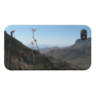 Big Bend-Mountains with Ocotillo Flower iPhone 4 Cases