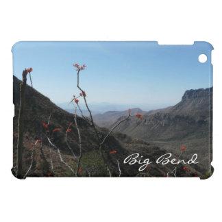 Big Bend-Mountains with Orange Flowers iPad Mini Covers