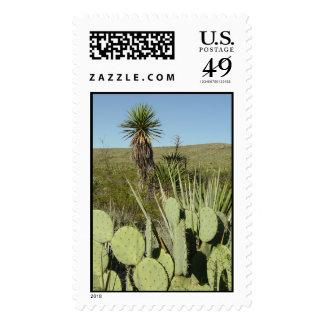 Big Bend National Park Postage Stamp