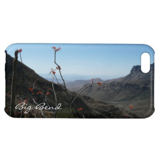 Big Bend Park, Texas-Mountains with Orange Flowers iPhone 5C Cover