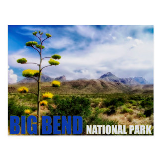Big Bend Texas U.S. National Park Post Card