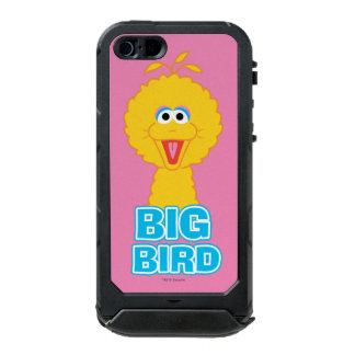 Big Bird Classic Style | Add Your Name Waterproof Case For iPhone SE/5/5s