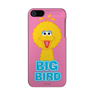 Big Bird Classic Style Metallic Phone Case For iPhone SE/5/5s