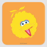 Big Bird Face Square Sticker