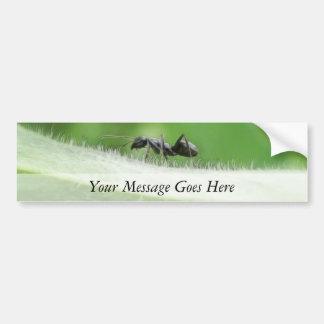 Big Black Ant Bumper Sticker
